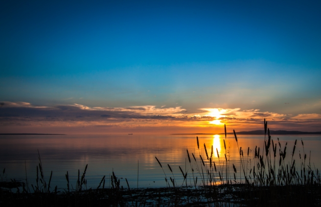 sunset_reeds_north_shore_port_lincoln_-_south_australia
